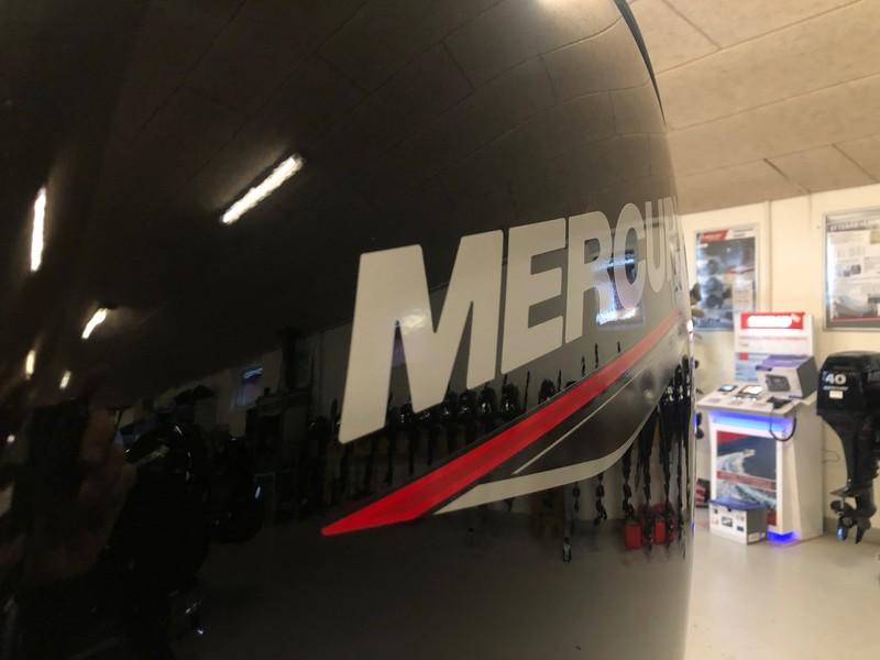 DEMO Mercury 150 hk